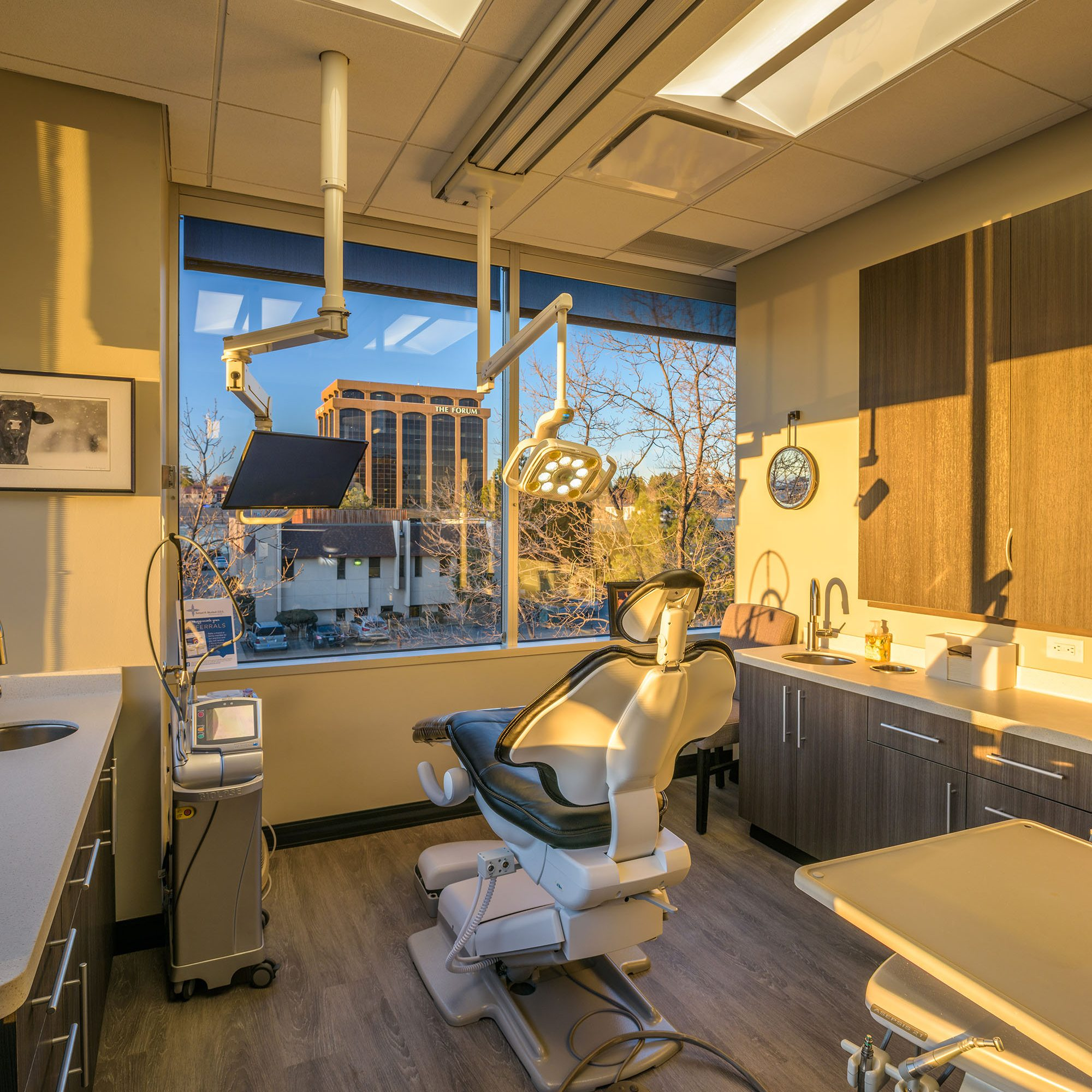 Gartland - Murdoch Dentistry - High Res-8